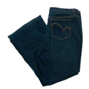 Venezia I Women's Plus Flare Jeans Size: 20 Petite